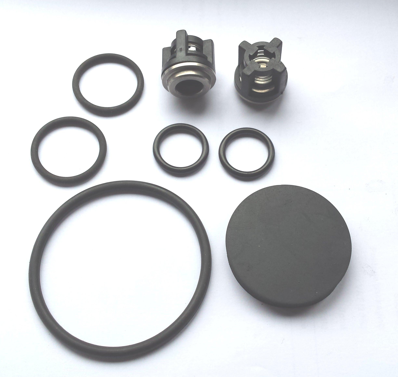 Chemical pump repair kit